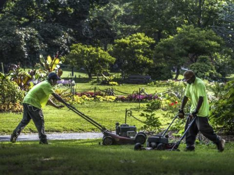Keeping our park beautiful