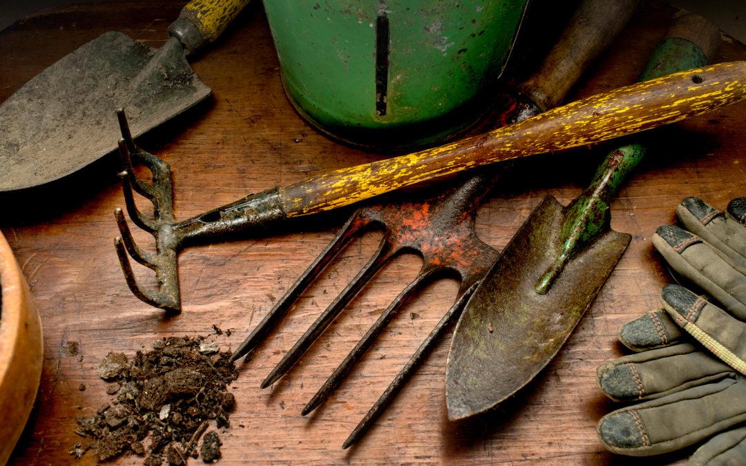 Winter Gardening Seminars with Judy Stacey