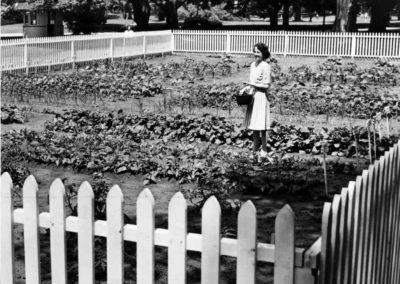 Victory Gardens 1944 TU Archive